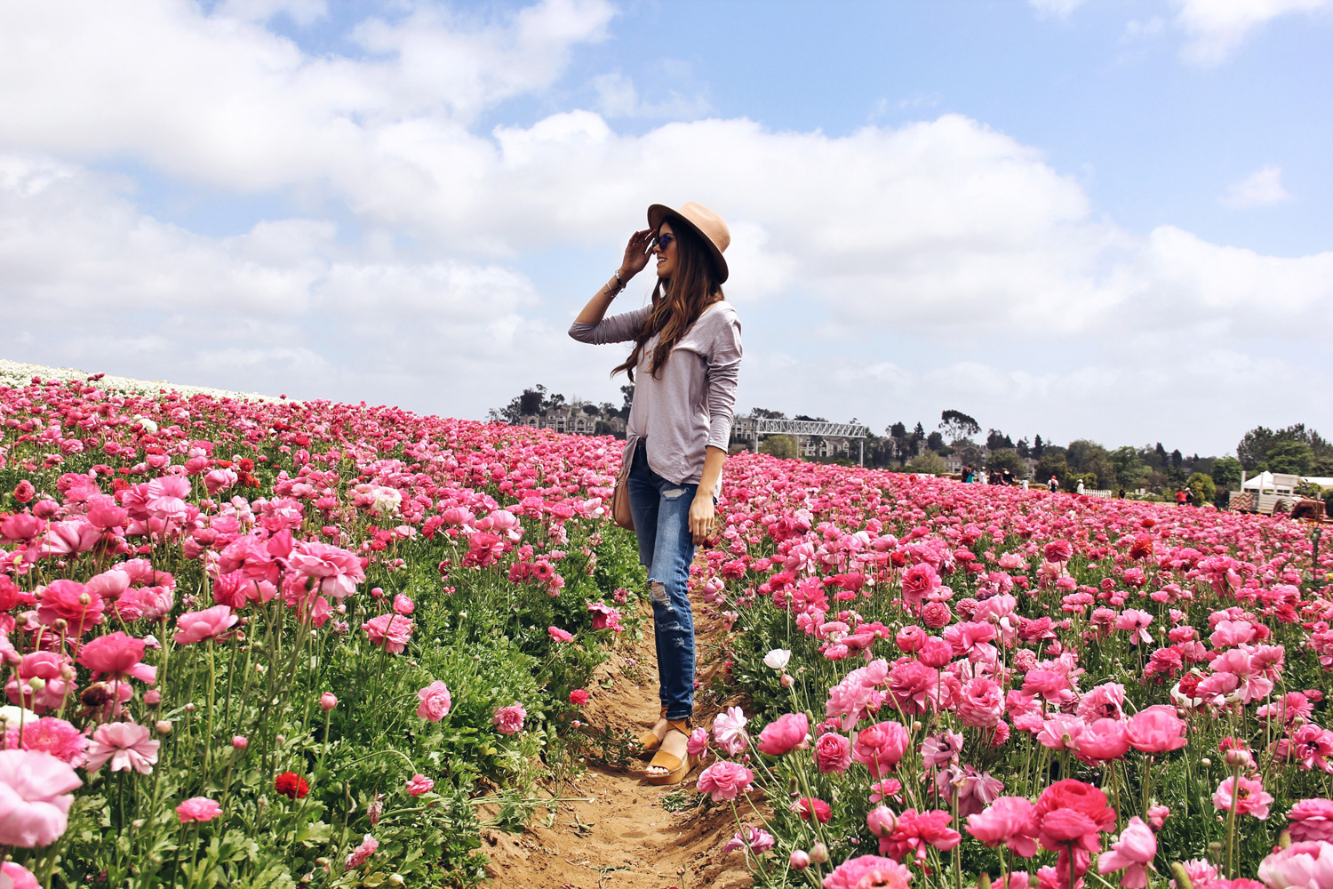 Carlsbad Flower Fields Day Trip